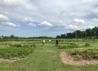 Clearview Community Garden to Receive Huronia Foundation Grant